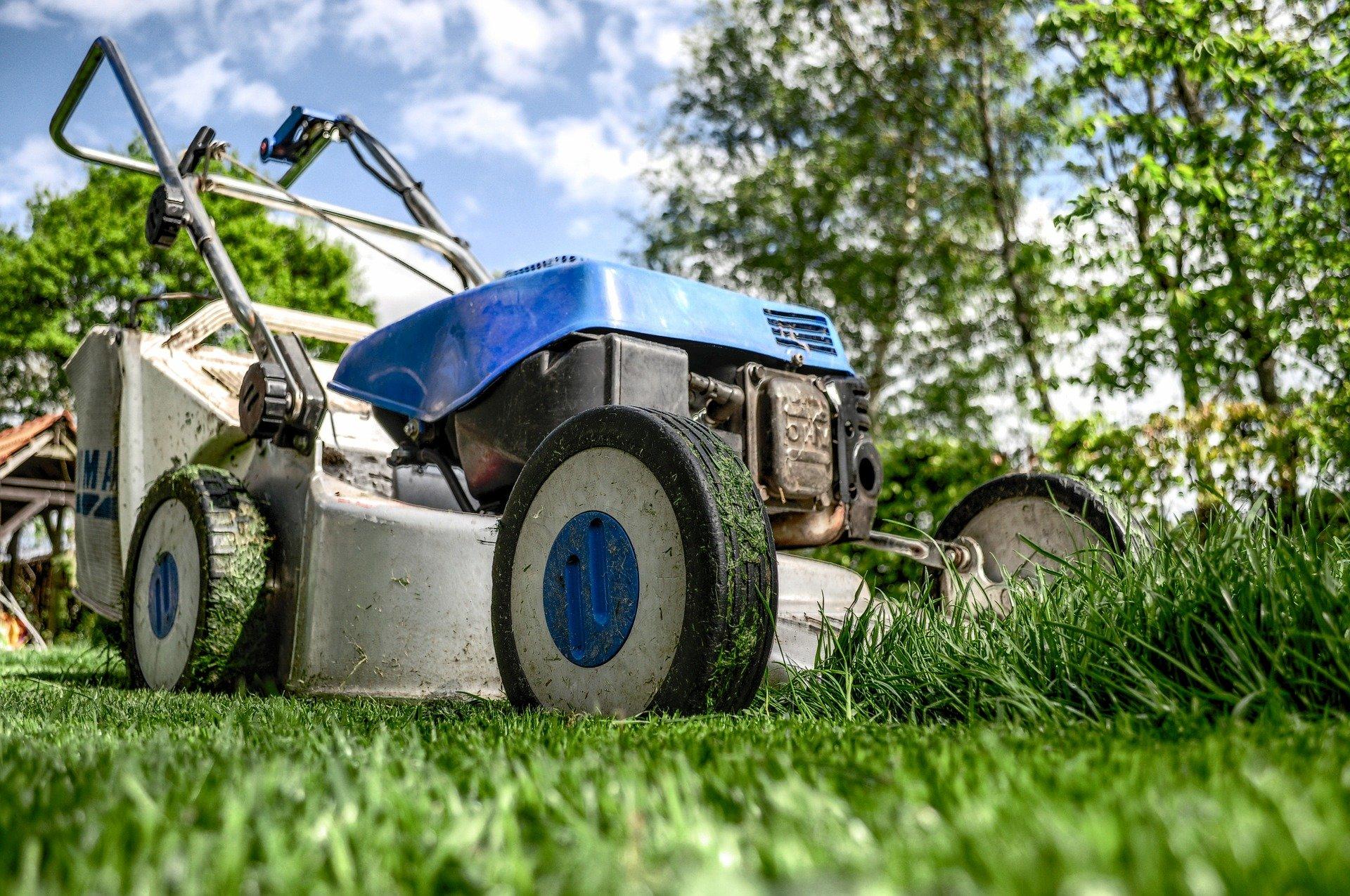 Lawn mower, mowing grass.